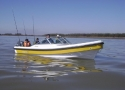 AR 620 Marlin