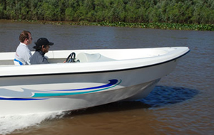 dorado-550-pesca